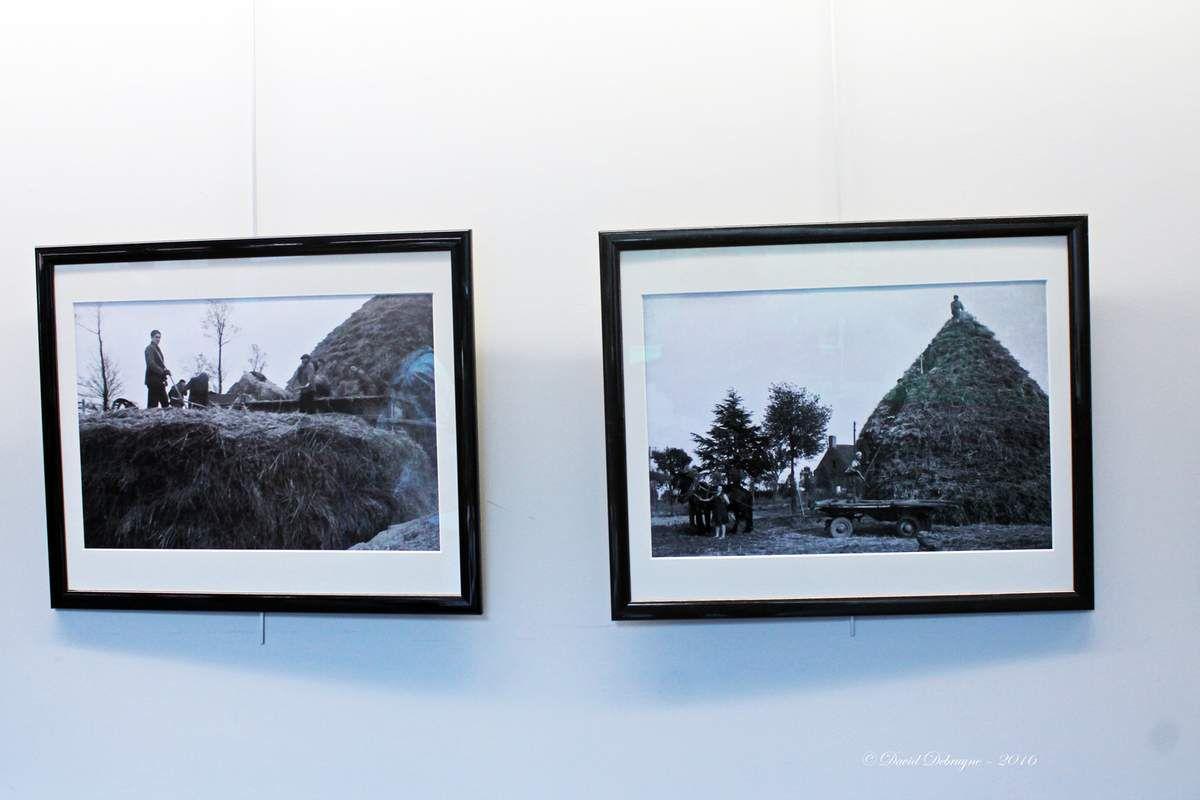 exposition photos de Jeanne Devos «  travaux d'été , travaux des champs »