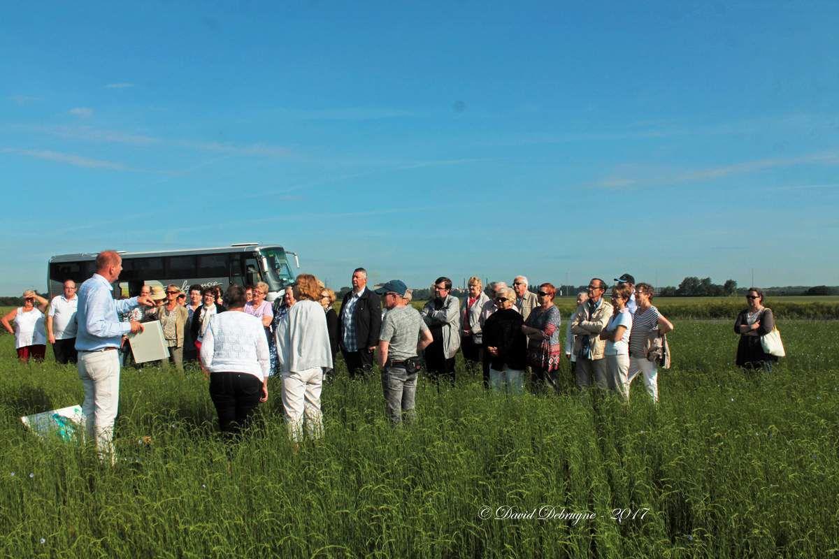 Un dimanche à la ferme (marché fermier trésors de Flandre) a la ferme Beyaert de Pitgam