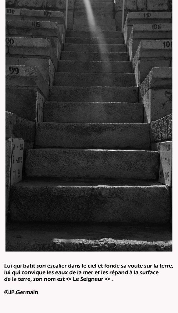 Marches entre les gradins de l'amphitheâtre romain à Césarée, capitale des procurateurs romains.