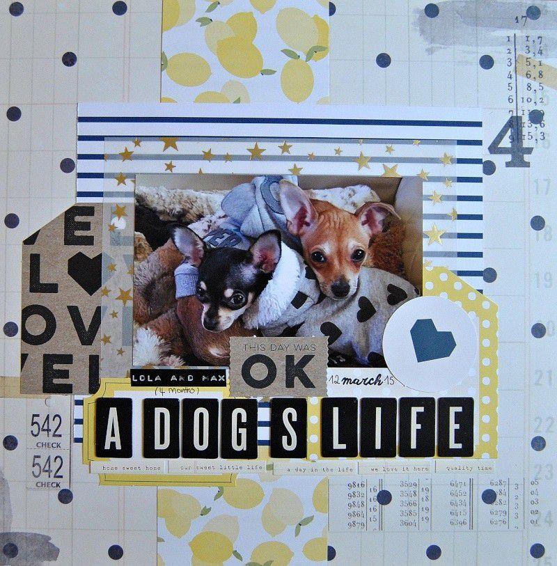 A Dog's Life/Une Vie De Chien