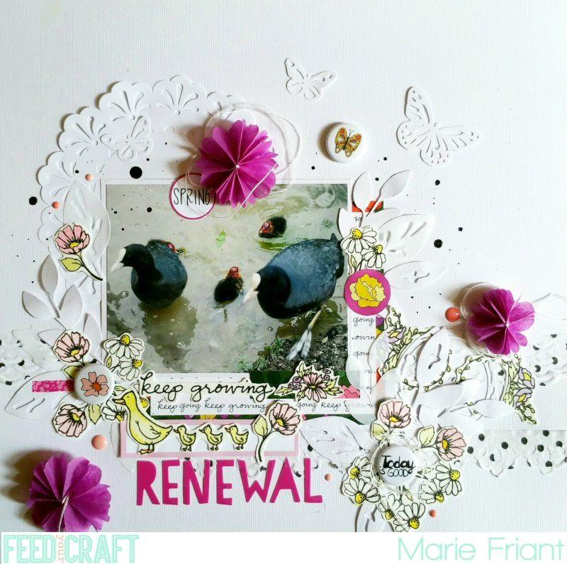 Renewal / Renouveau