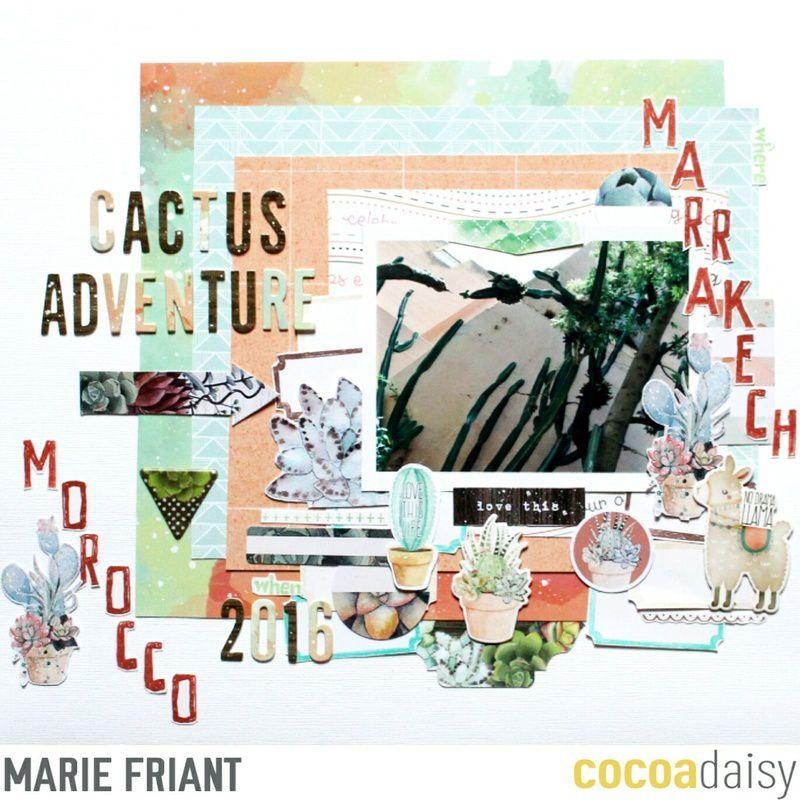 Cactus Adventure