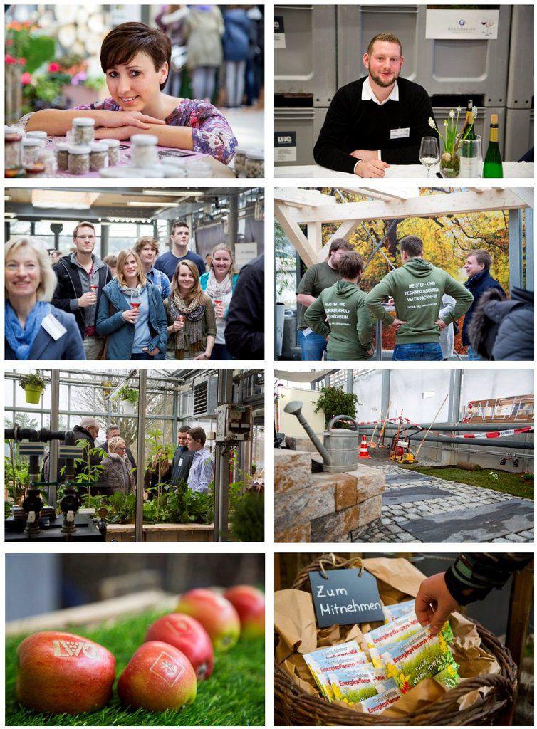 Erfolgreiche Ausstellung der Veitshöchheimer Meister- und Technikerschule für Weinbau und Gartenbau
