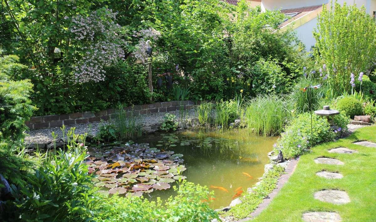 und dem ebenfalls durch Trockenmauern umgebenen Gartenteich mit verschiedenen Fischarten als Blickfang auf der Westseite.