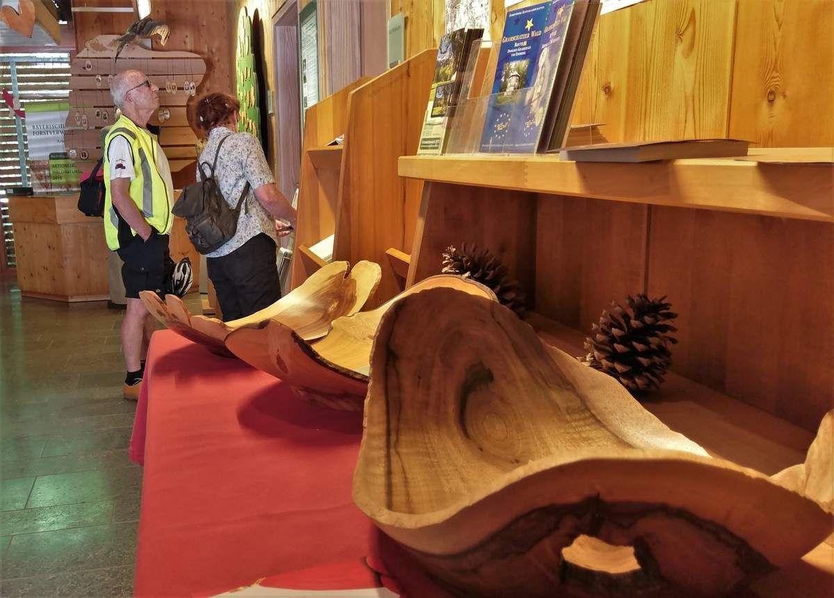 Veitshöchheimer Stadtradeln 2017 - Auftakttour führte zum Walderlebniszentrum - Dem Klimawandel auf der Spur