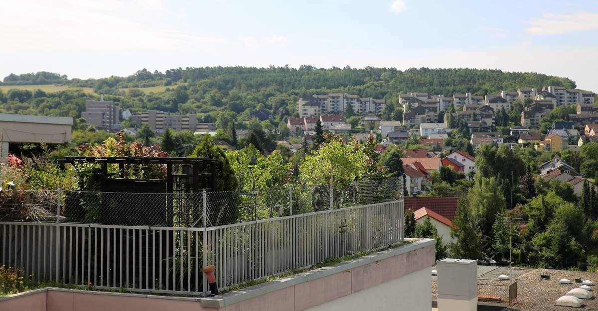 Blick nach Süden zum Schenkenfeld - Im Vordergrund der Penthouse-Garten von Manuela Hensel (eigener Bericht)