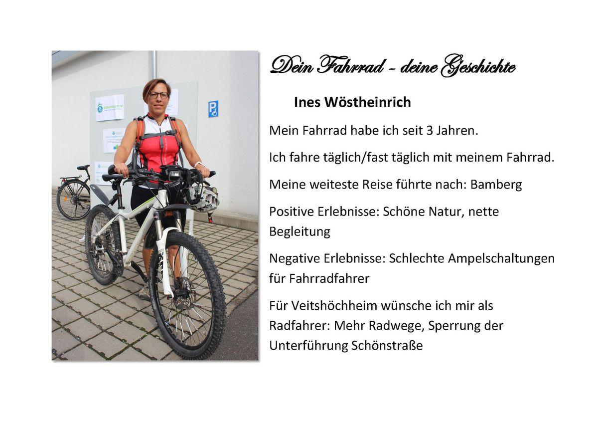 Über 31.600 Fahrrad-Kilometer: Veitshöchheim ist beim Stadtradeln unterfränkischer Spitzenreiter