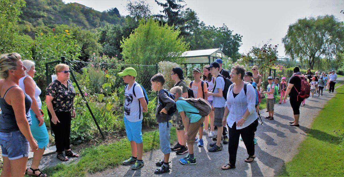 Einen nicht alltäglichen Ausflug unternahmen heute die 39 Kinder im Alter von sechs bis zwölf Jahren, die auch in den Sommerferien den Inklusionshort der AWO an der Eichendorffschule besuchen. Ihr Weg führte, von zehn Erwachsenen betreut, zum Altort und von dort am Mainufer entlang bis nach der Kläranlage zum neuen Veitshöchheimer Heilkräuter-Bürgergarten, wo sie von Karin Kissel an der Eingangstür empfangen wurden.