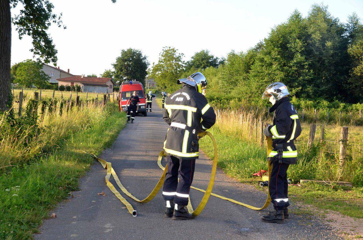 La capture d'un serpent était au menu de la dernière manoeuvre des pompiers de Boz et d'Ozan.