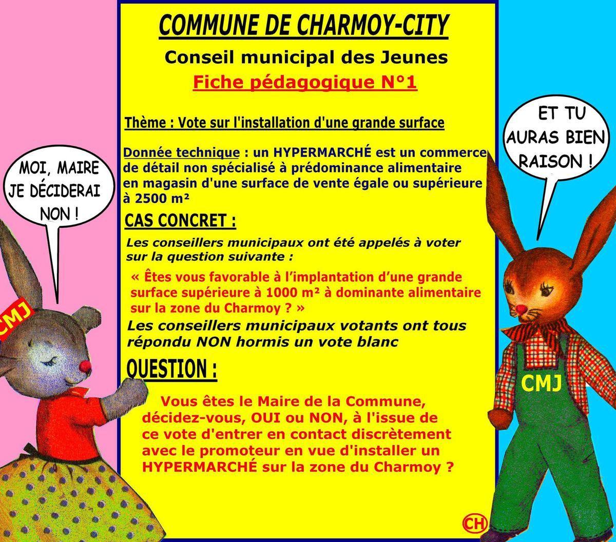 ALBUM - LES PETITS LAPINS DU CMJ DE CHARMOY-CITY