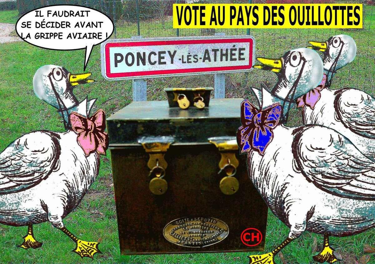 Vote au pays des ouillottes