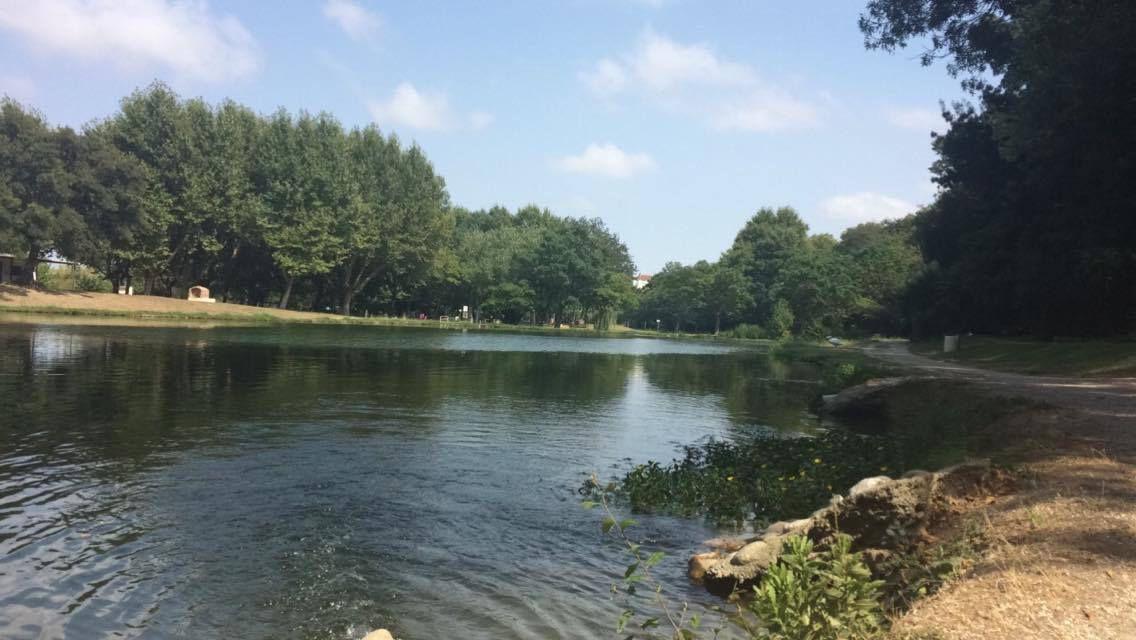 Le lac du soler