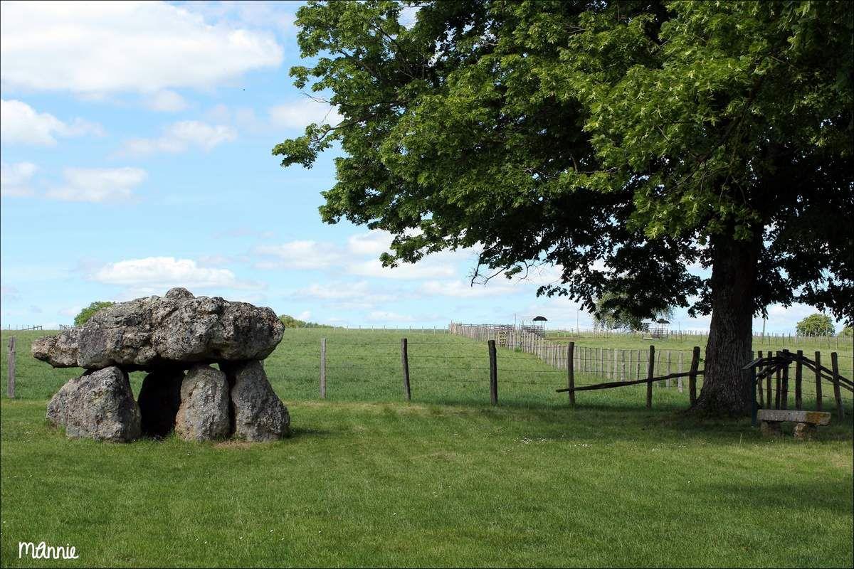 le dolmen de Maupertuis