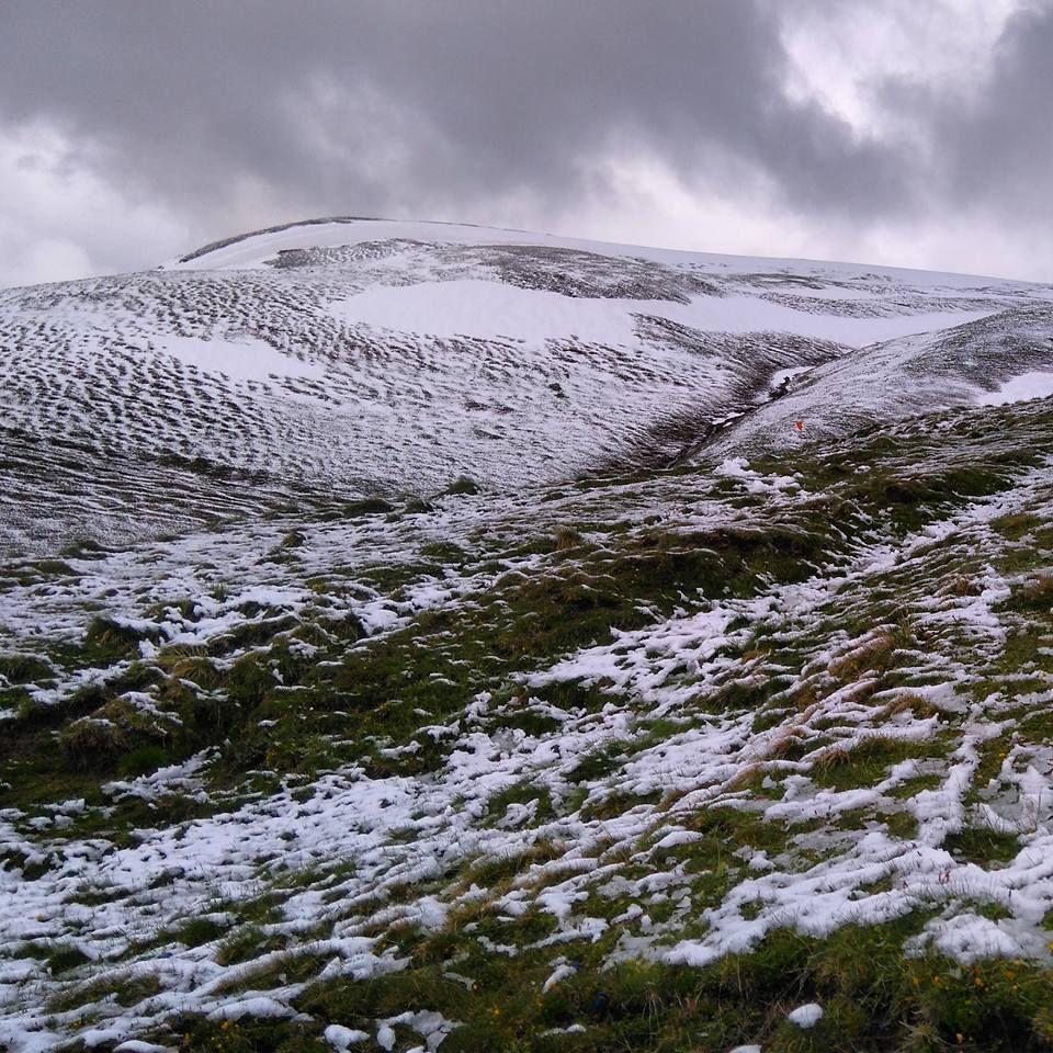 Plateau d'Emparis, sous la neige fraîche