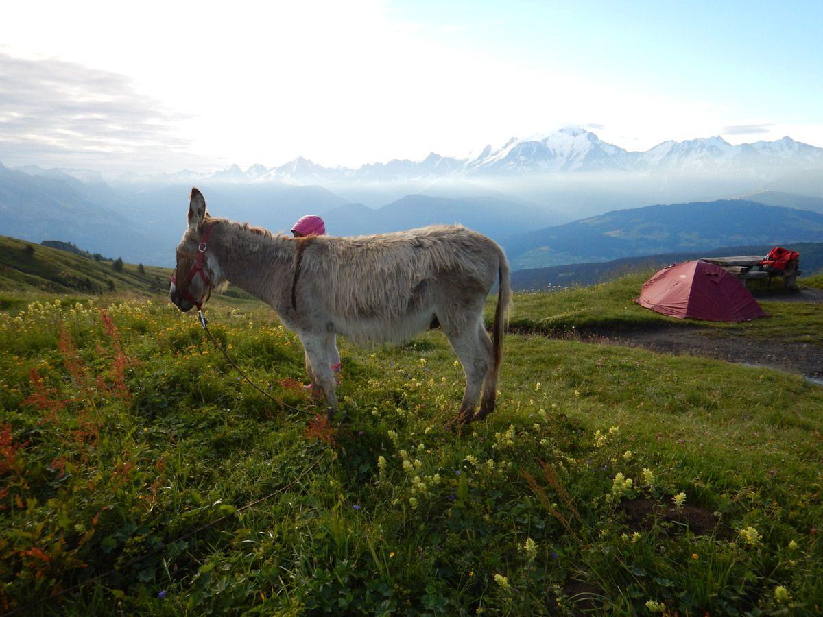 Bivouac avec vue sur le Mont-Blanc