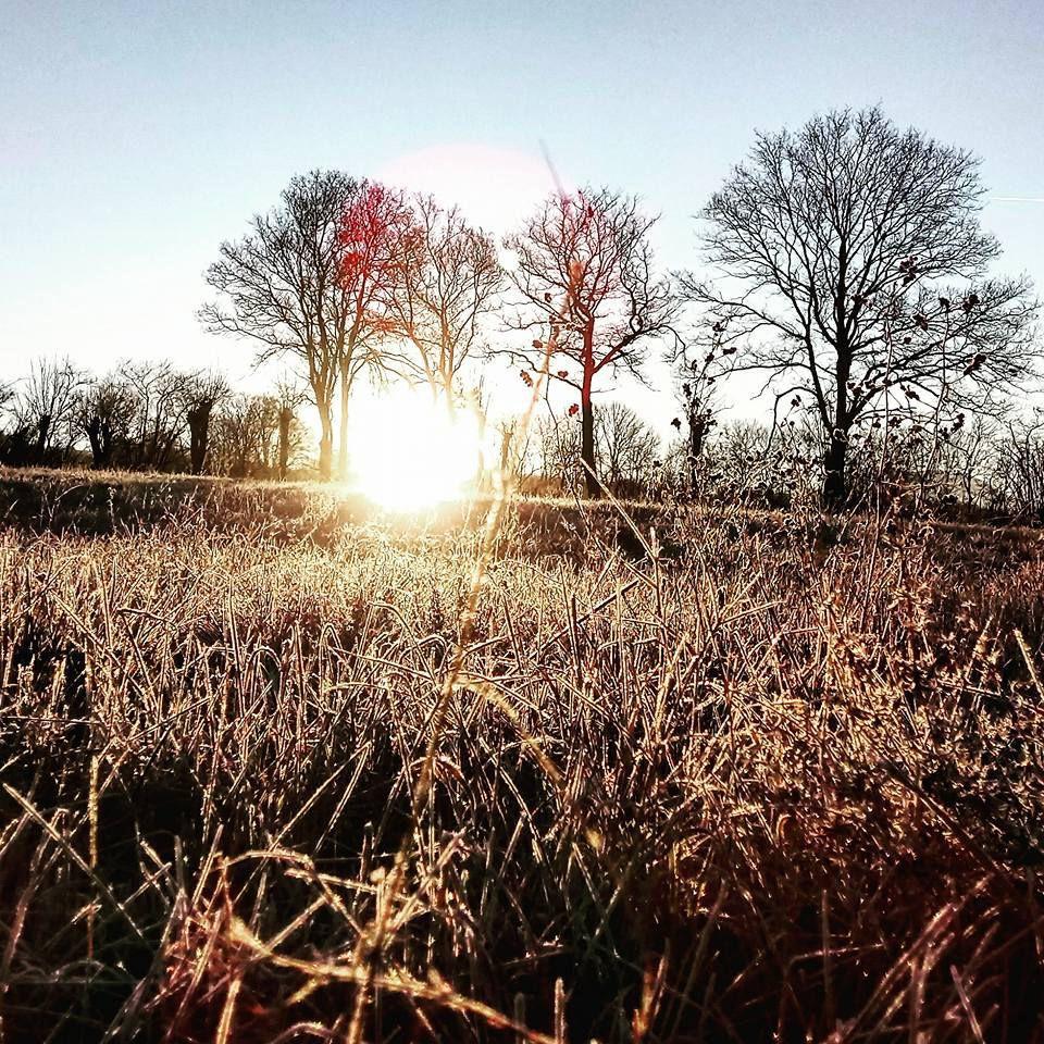 8 heures, un petit matin de fin décembre dans le Champsaur. Pas de neige, mais une belle gelée blanche. -8 degrés !