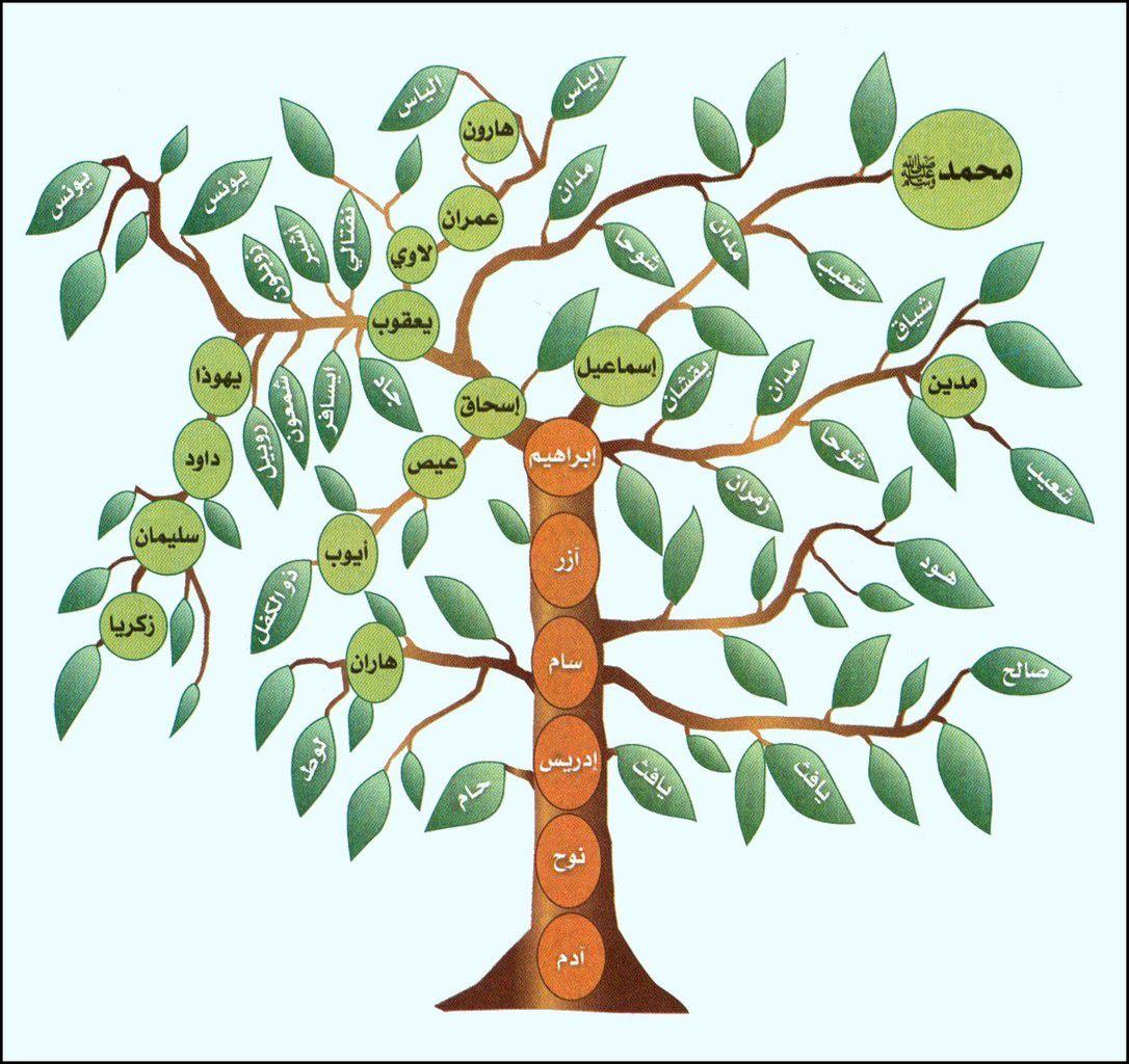 Concernant l'arbre généalogique du Prophète صلى الله عليه وسلم (audio)