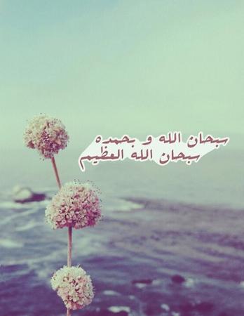 Faire ressembler Allah تعالى à sa création (audio-vidéo)