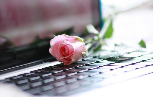 Avez-vous un conseil à donner aux femmes qui utilisent internet et au sujet de la fitna des hommes? (audio)