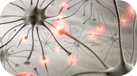 La cure de l'épilepsie