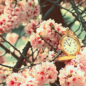 Incitation à la sincérité et à la gestion du temps