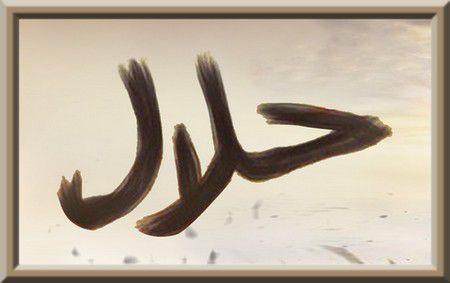 La différence entre : «Ce qui est permis - الجائز» et «Ce qui est licite - الحلال» (audio)