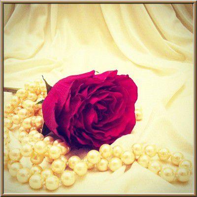 Recherche femme veuve pour mariage