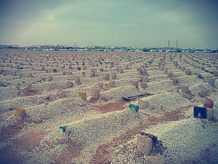 La visite des cimetières par les femmes