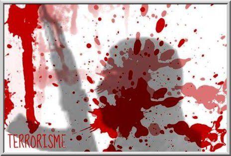 Condamnation des attaques terroristes de Bruxelles (vidéo)