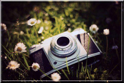 Le jugement de la photographie