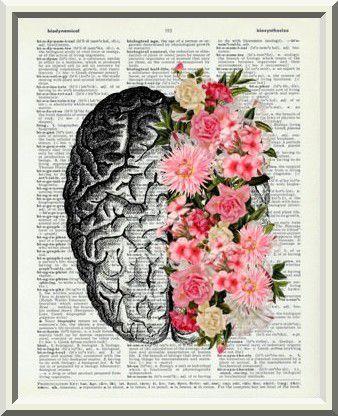 L'intelligence de certaines femmes