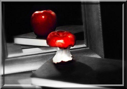 La vanité chez les étudiants en science (audio-vidéo)