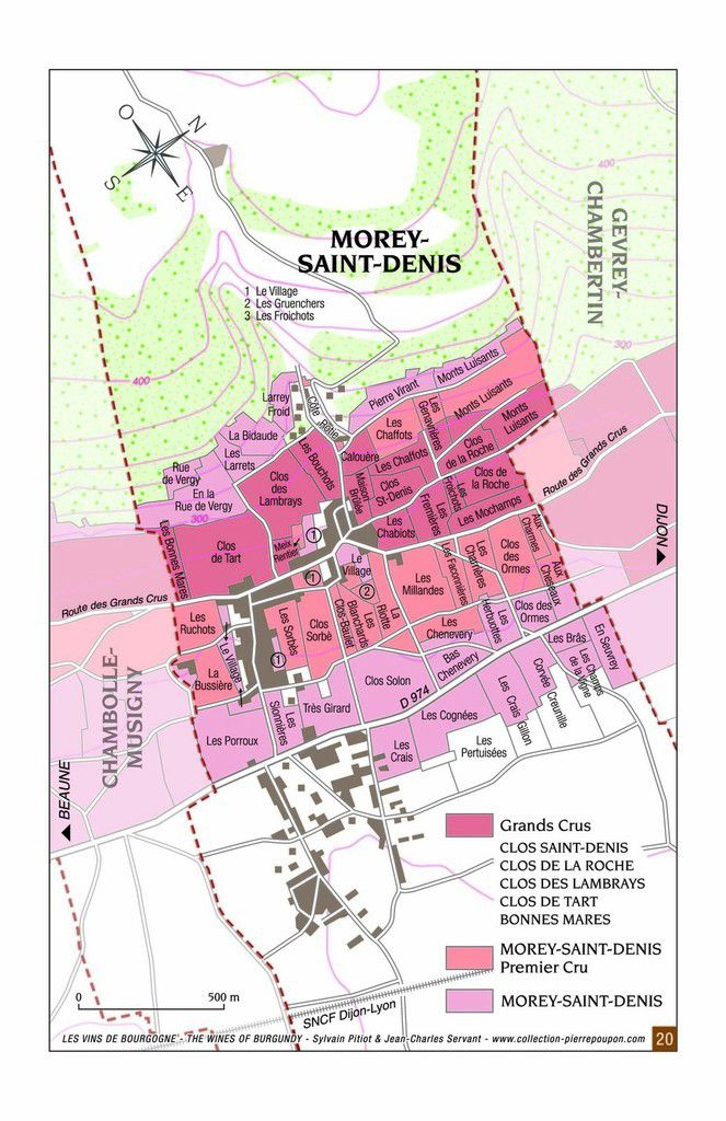 Comprendre le Vignoble de Morey Saint Denis