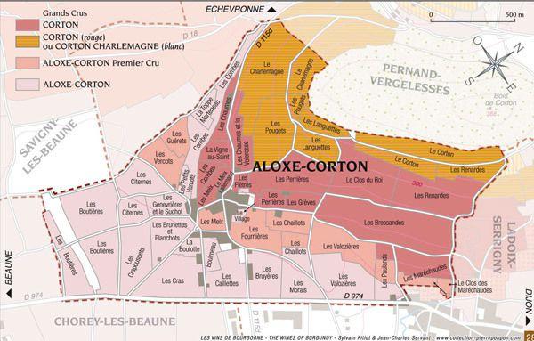 Le Corton-Bressandes: Un grand cru de plaine?