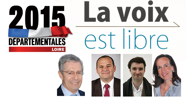 Départementales 2015 : Débat TV en direct !