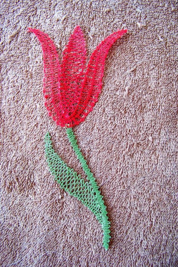 Une Tulipe....