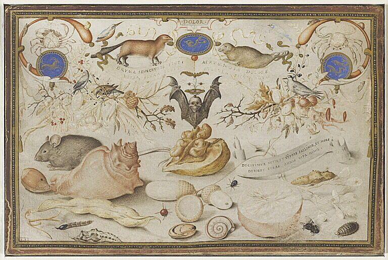 Hoefnagel 1589 Allégorie des saisons : l'Hiver, © Musée du Louvre, dist. RMN-Grand Palais - Photo M. Beck-Coppola