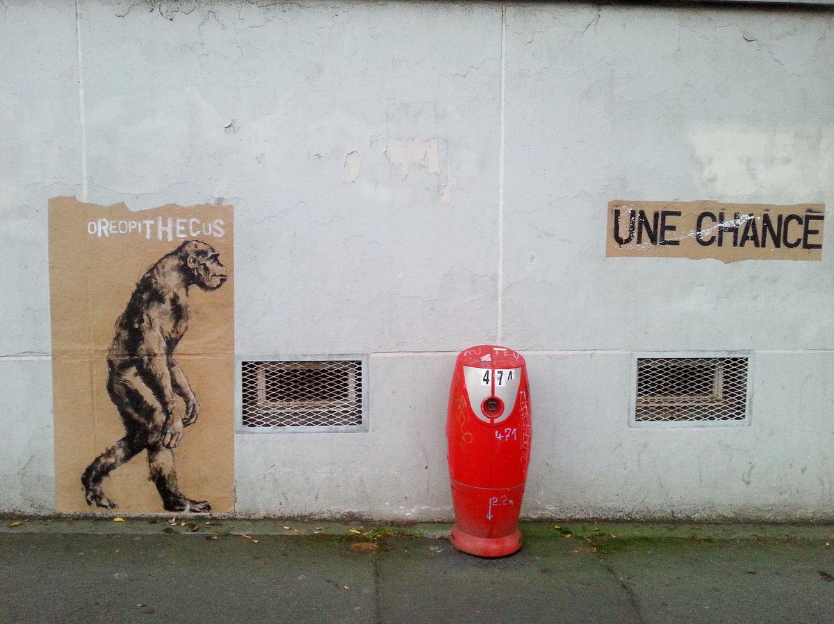 Oreopithecus, Rue de l'Harteloire, 19 octobre 2015, photographie lavieb-aile.