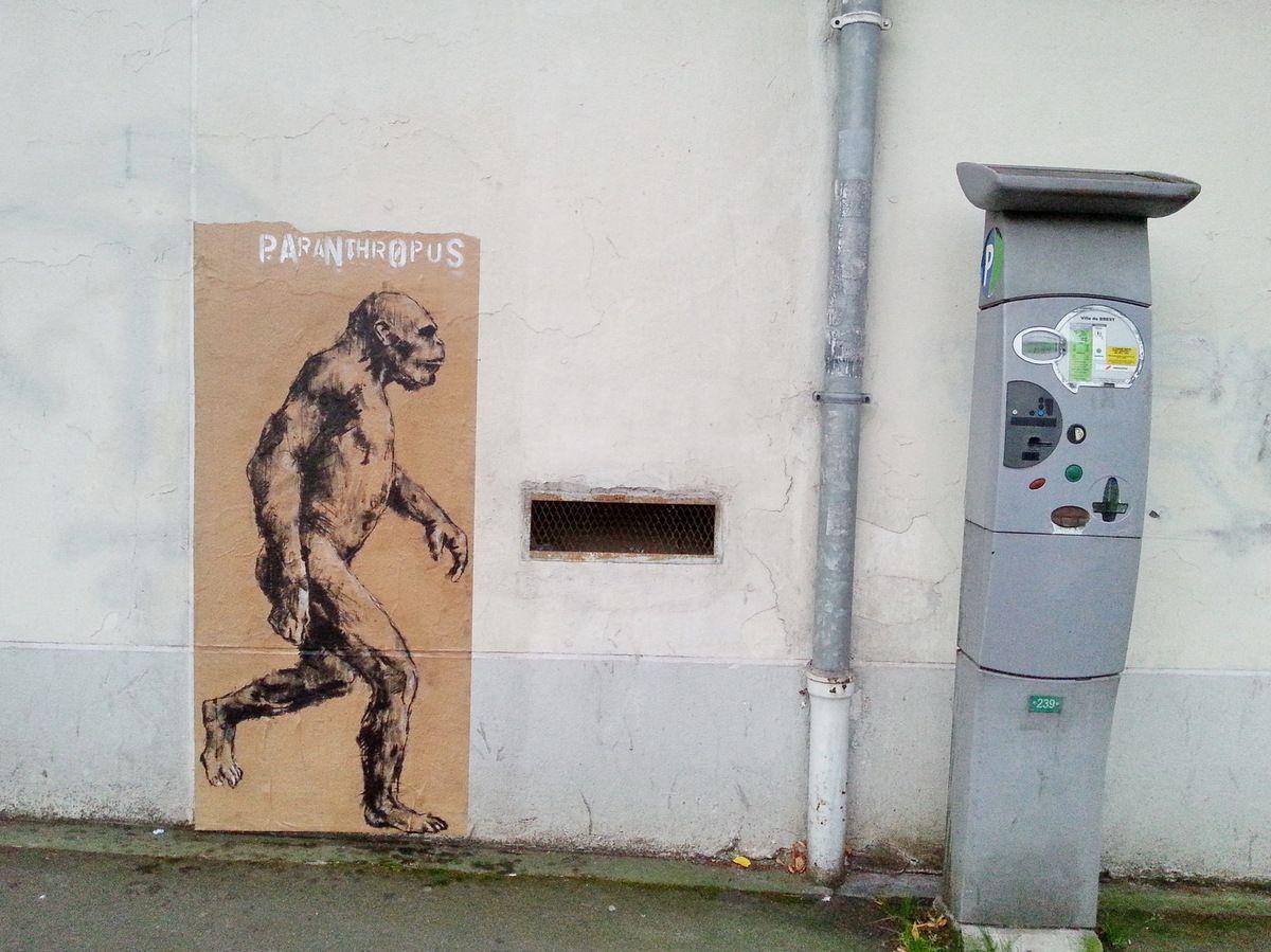 Paranthropus,  Rue de l'Harteloire, 19 octobre 2015, photographie lavieb-aile.