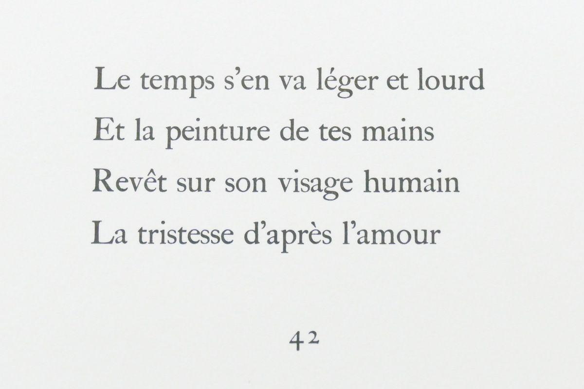 Photographie lavieb-aile lors de l'exposition de la Fondation Hélène et Édouard  Leclerc à Landerneau.