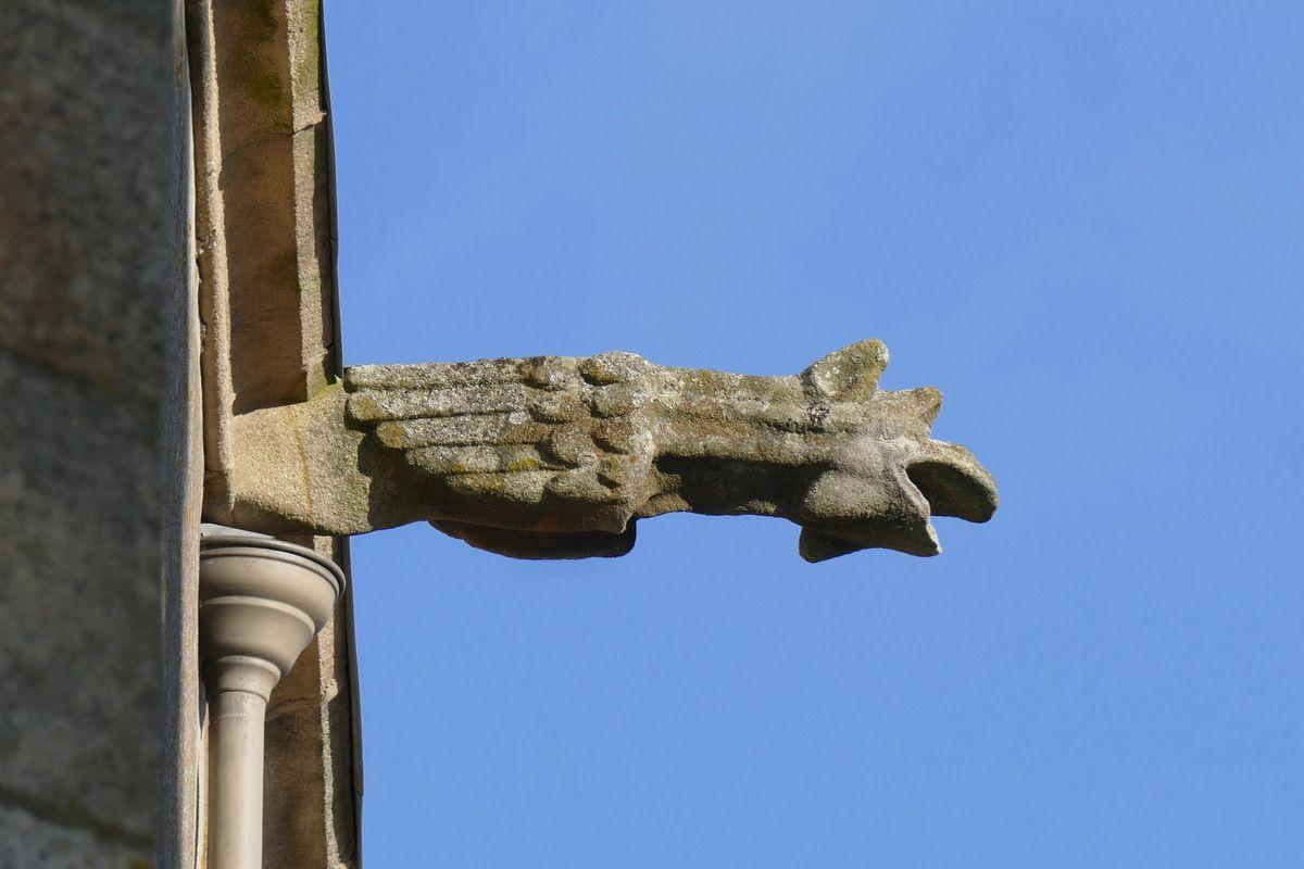 Gargouille de l'église Saint-Houardon, photographie lavieb-aile.