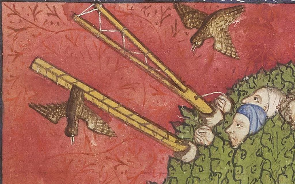Chasse avec une chouette à la grive ou mauvis, Le livre du roy Modus et de la royne Racio, enluminure 93v du manuscrit Bnf fr. 12399.