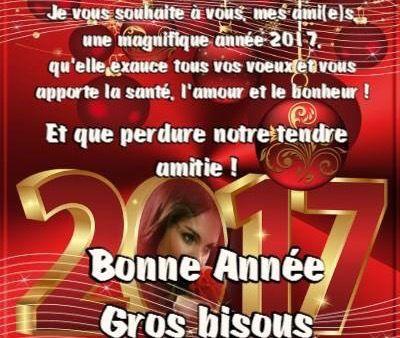 Bonne année...✨✨✨