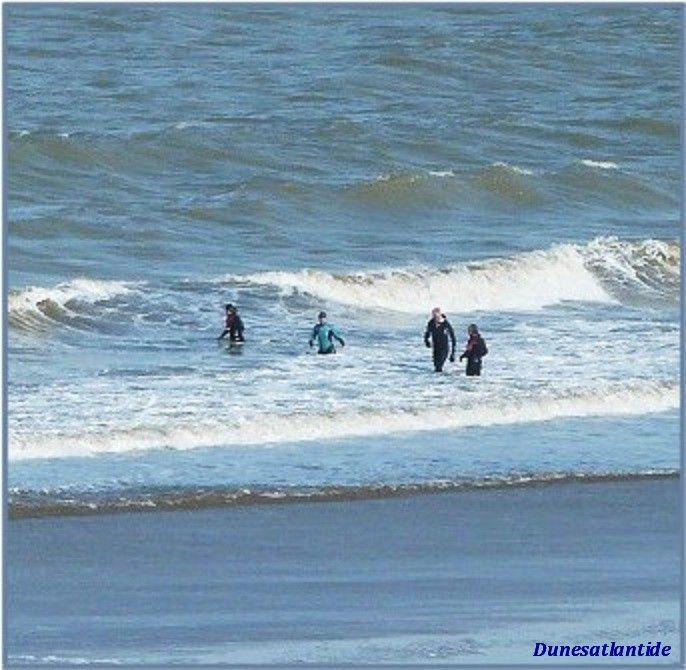Vent  fort  sur  la  côte  ... des  sportifs  heureux !