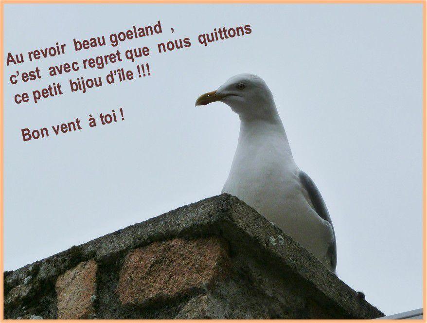 Balade  sur  l'île  Bréhat , suite ...