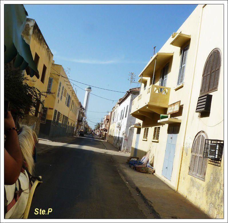 voyage  Sénégal ( suite  4 ) Saint Louis  en  calèche