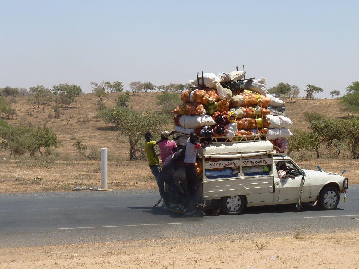Sénégal , allons  voir  les  petits  écoliers !