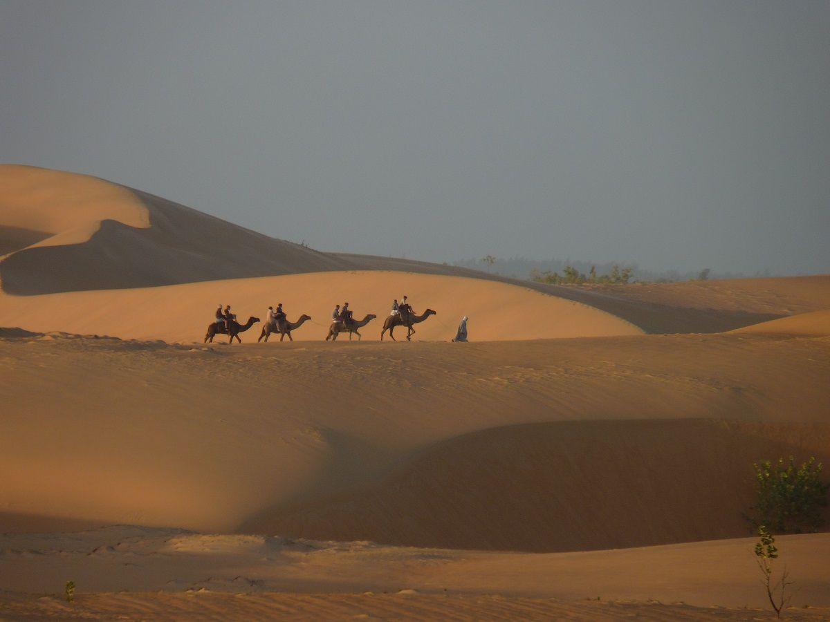 Sénégal (suite) promenade et  nuit  dans  le  désert !