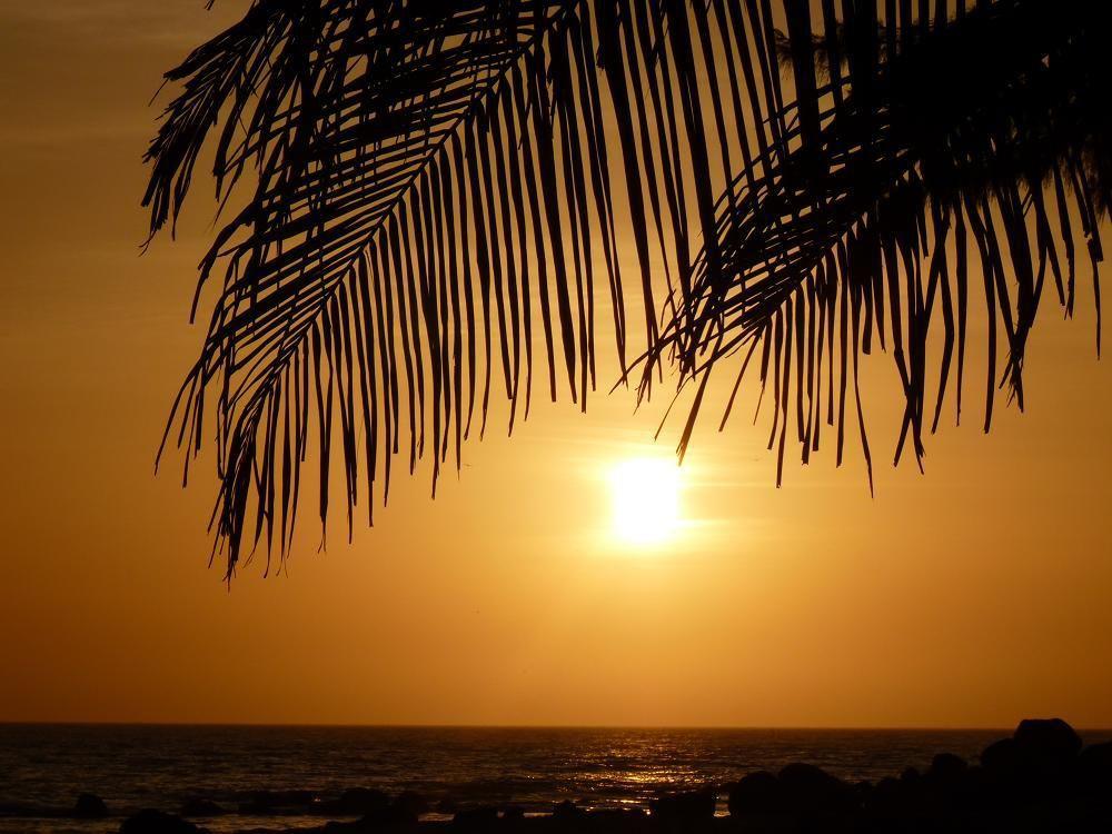 Sénégal : lutte sur  la  plage  sur  fond  de  coucher de  soleil !