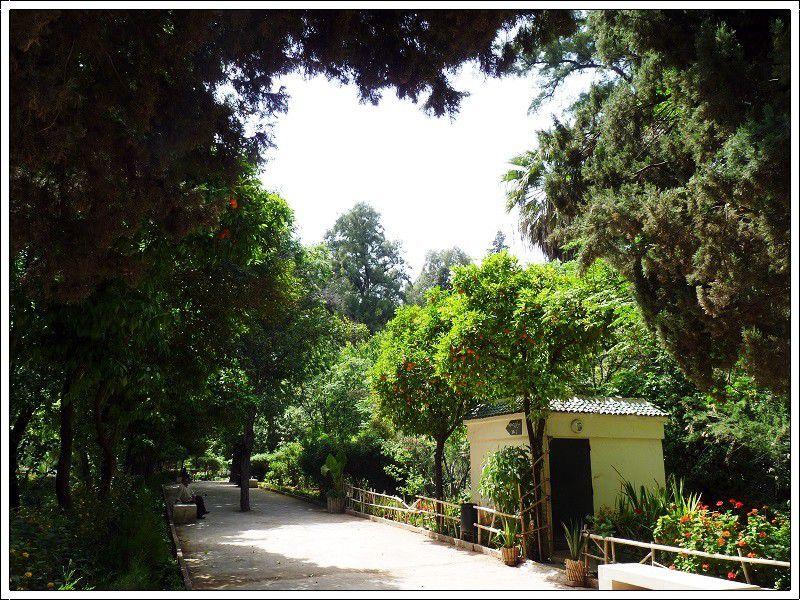 Le  jardin Jnan Sbil et la  place  Boujloud à Fès